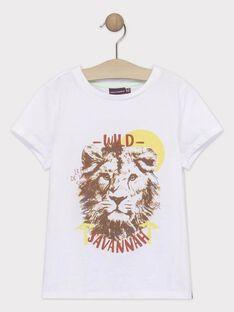 T-shirt maniche corte ecrù bambino TYPOLAGE / 20E3PGM1TMC000