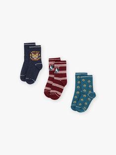 Set 3 paia di calze abbinate bambina BUNIAGE / 21H4PGB1LC3715